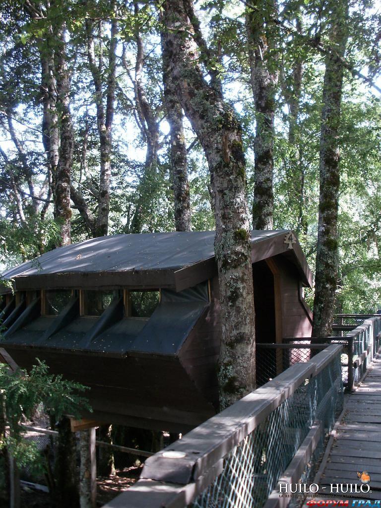 Отель Canopy Village