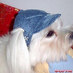 Мужские шляпы.  Женские шапки зимние.  Женские головные уборы, кожаные...