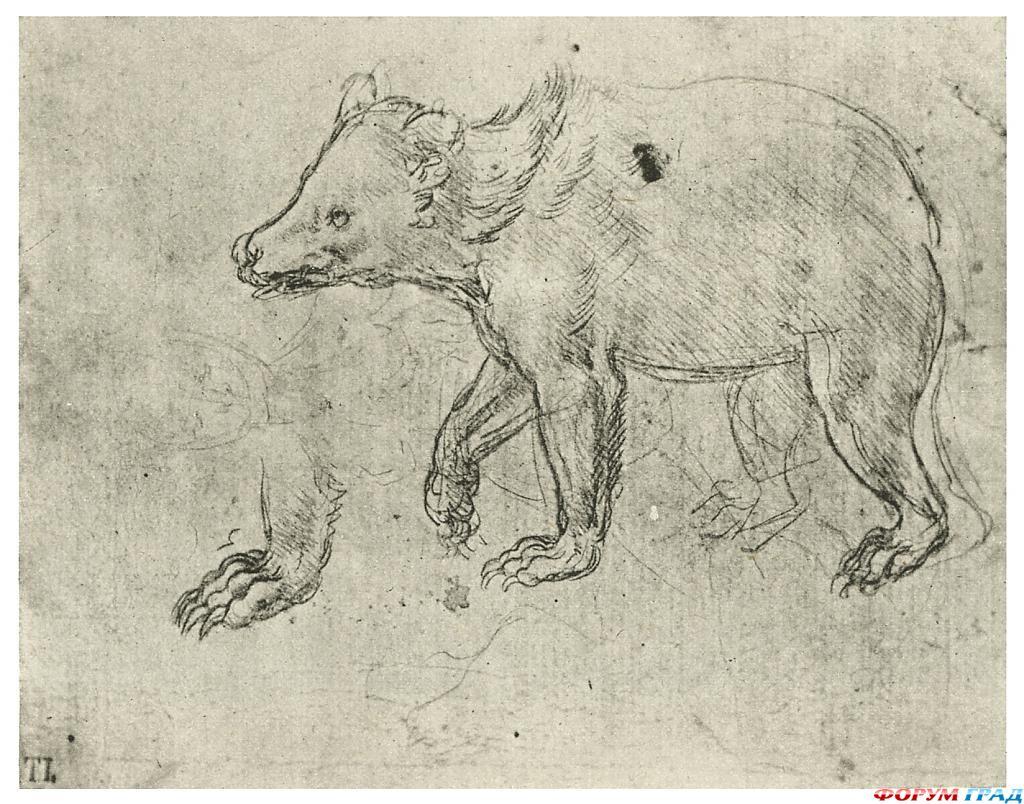 Животные рисунки великих художников 5